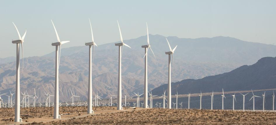Renewable energy projects are plant in the Middle East and North Africa (symbolic picture)