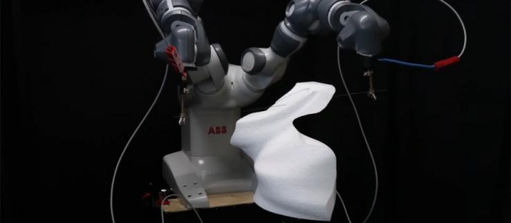 ETH  scientists have developed a hot-wire cutting robot that guides highly flexible tools so precisely that it is able to carve a rabbit.