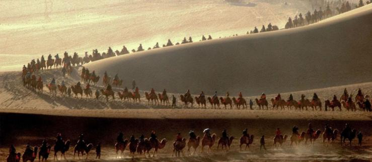 Caravan of camels in the desert