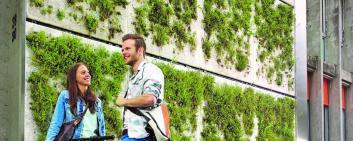The Skyflor® green wall system developed by HEPIA offers vertical oases of greenery.